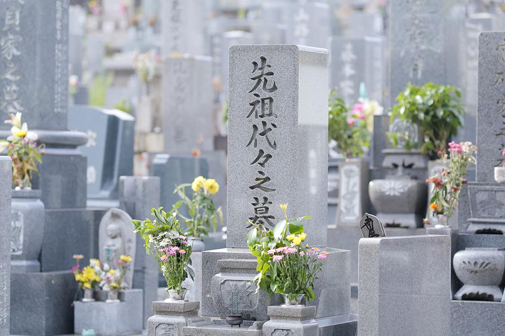 建立されたお墓